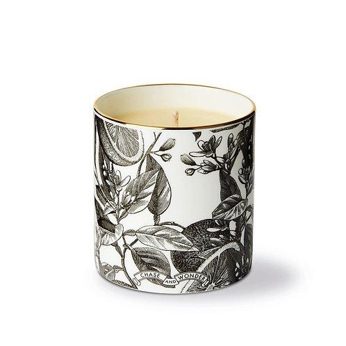 The Orangery Ceramic Luxury Scented Candle