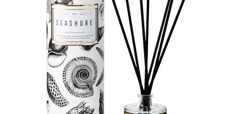 The Seashore Luxury Reed Diffuser - Chase & Wonder