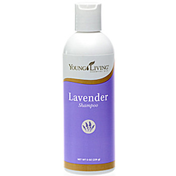 Lavender Volume Shampoo 8oz (US)