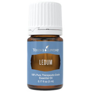 Ledum 5ml (US)