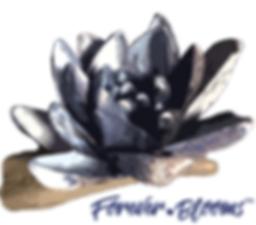 Forever-Blooms-Logo-PNG.png