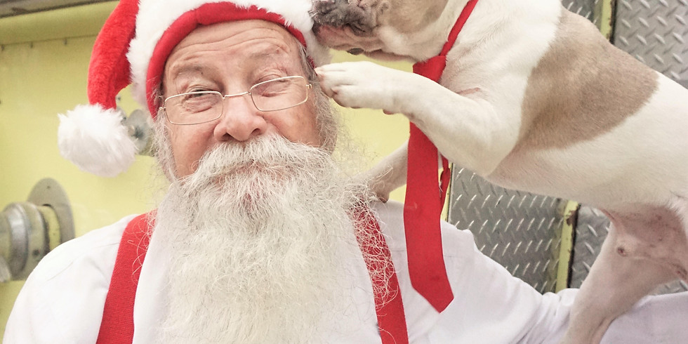 Santa Paws Pictures