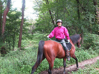 鞍のない馬の背で野を駆ける、 それは「力強いキントウン」の感触!