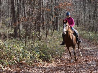 裸馬騎乗会と外乗に参加して