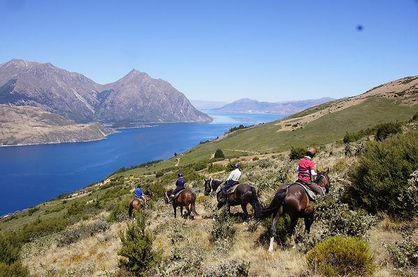 NZ風景.jpg