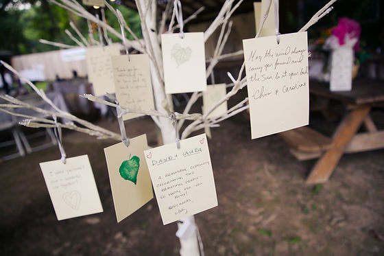 Instead of a sign in book, have your guests hang their wish for you on your Wishing Tree.