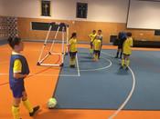 Girls Futsal.jpg