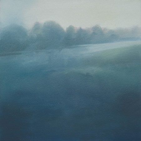 mist in gellideg