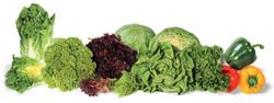 DFI-salad-fruit-produce-importer-UK4