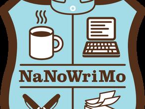 SPOTLIGHT: NANOWRIMO