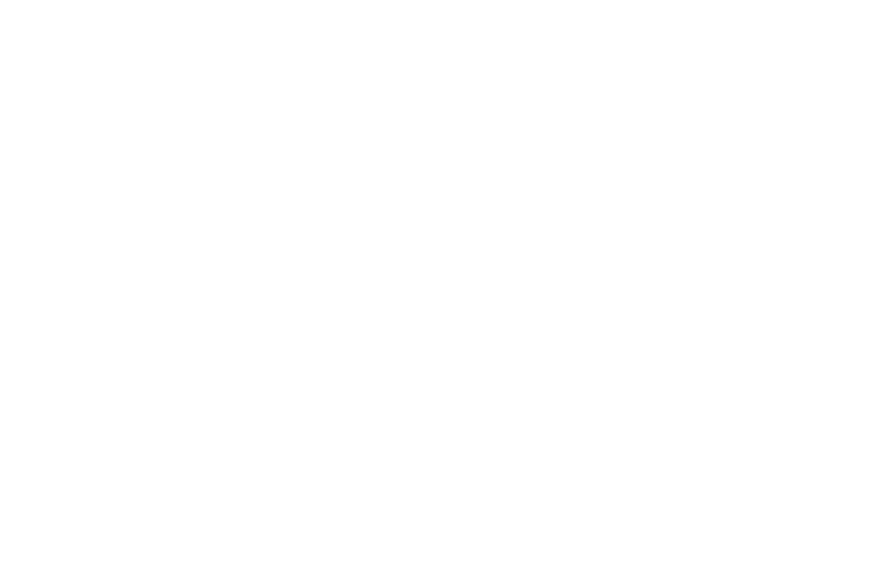 WINNER - INDEPENDENT SPIRIT AWARD - A Night of Horror International Film Festival