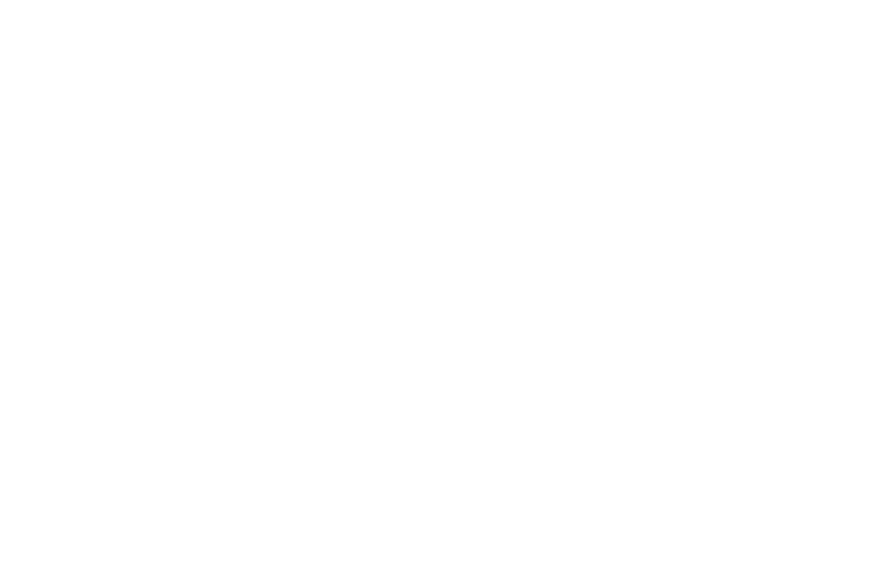 OFFICIAL SELECTION - SF INDIEFEST - San Francisco 2018
