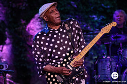 Buddy Guy at Music in the Zoo
