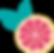 Favicon-Pamplemousse-RVB_Plan de travail