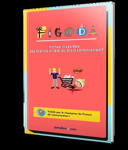 FIGADA gaja image droit administratf.png