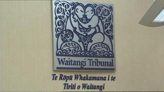 Maori Womens Welfare League Files Claim to halt Law Changes