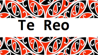 Supporting learners of te reo in tertiary organisations