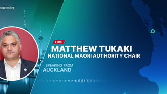 Sack the CEO or nationalise the Port of Auckland
