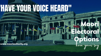 The Maori Electoral Options have your say