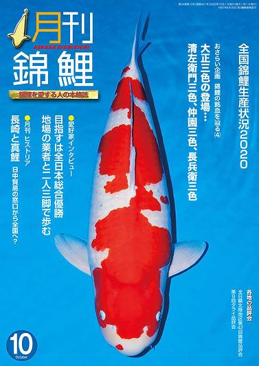 月刊錦鯉202010.jpg