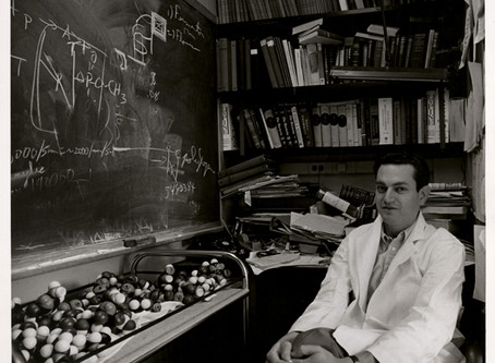 New York Academy of Science Remembers Marshall Nirenberg