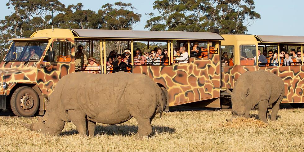 Open Safari at Werribee Zoo