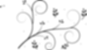 black-lines-md.png