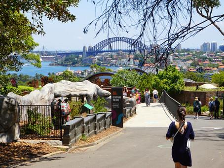 Sydney Günlüğü: Yeni Bir Hayatı Keşfetmek