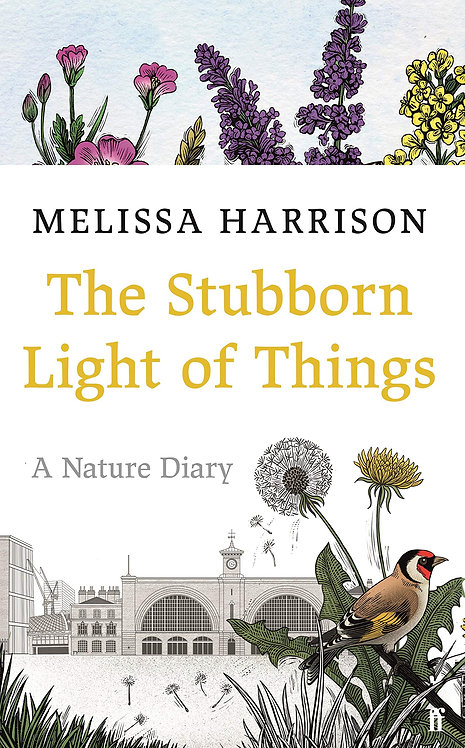 The Stubborn Light of Things with SIGNED bookplates
