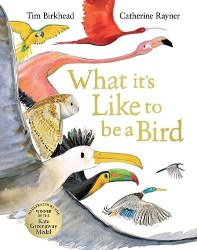 What it's Like to be a Bird