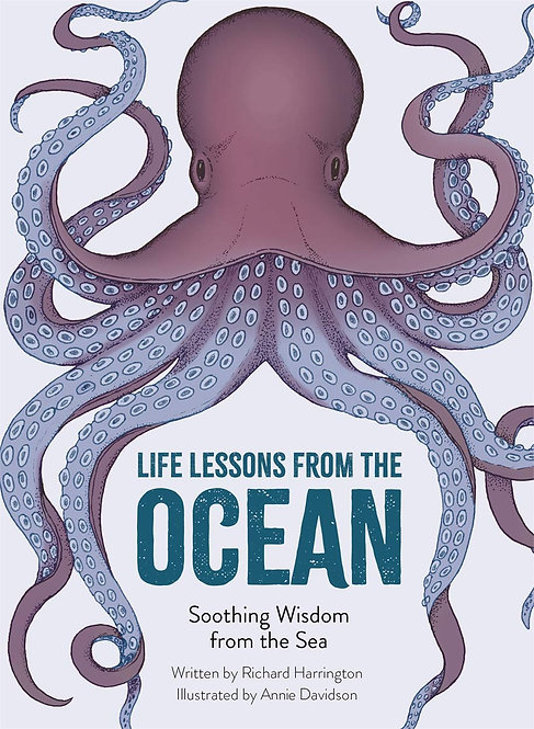 Life Lessons from the Ocean: Soothing Wisdom from the Sea