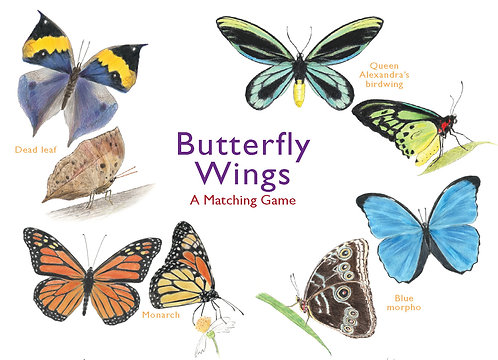 Butterfly Wings Memory Game