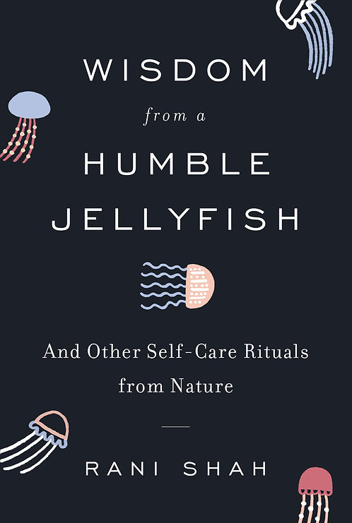 Wisdom From a Humble Jellyfish