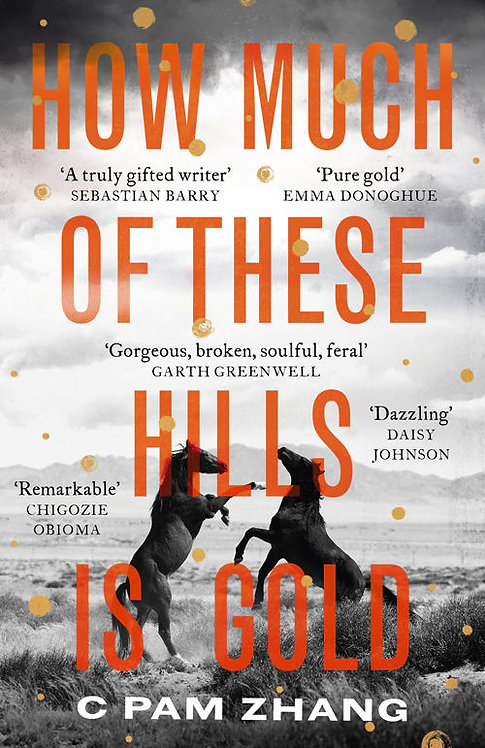 How Much of These Hills is Gold (Hardback)