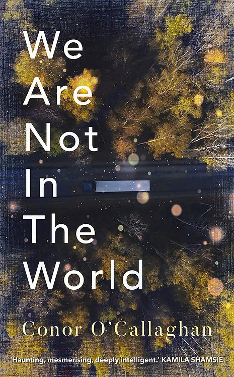 We Are Not in the World (Hardback)