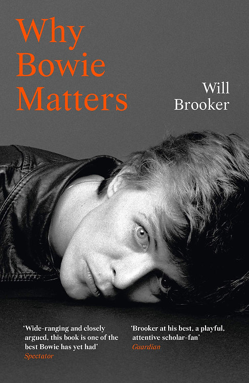 Why Bowie Matters (Why Music Matters)