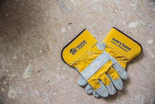 hfh glove.jpg