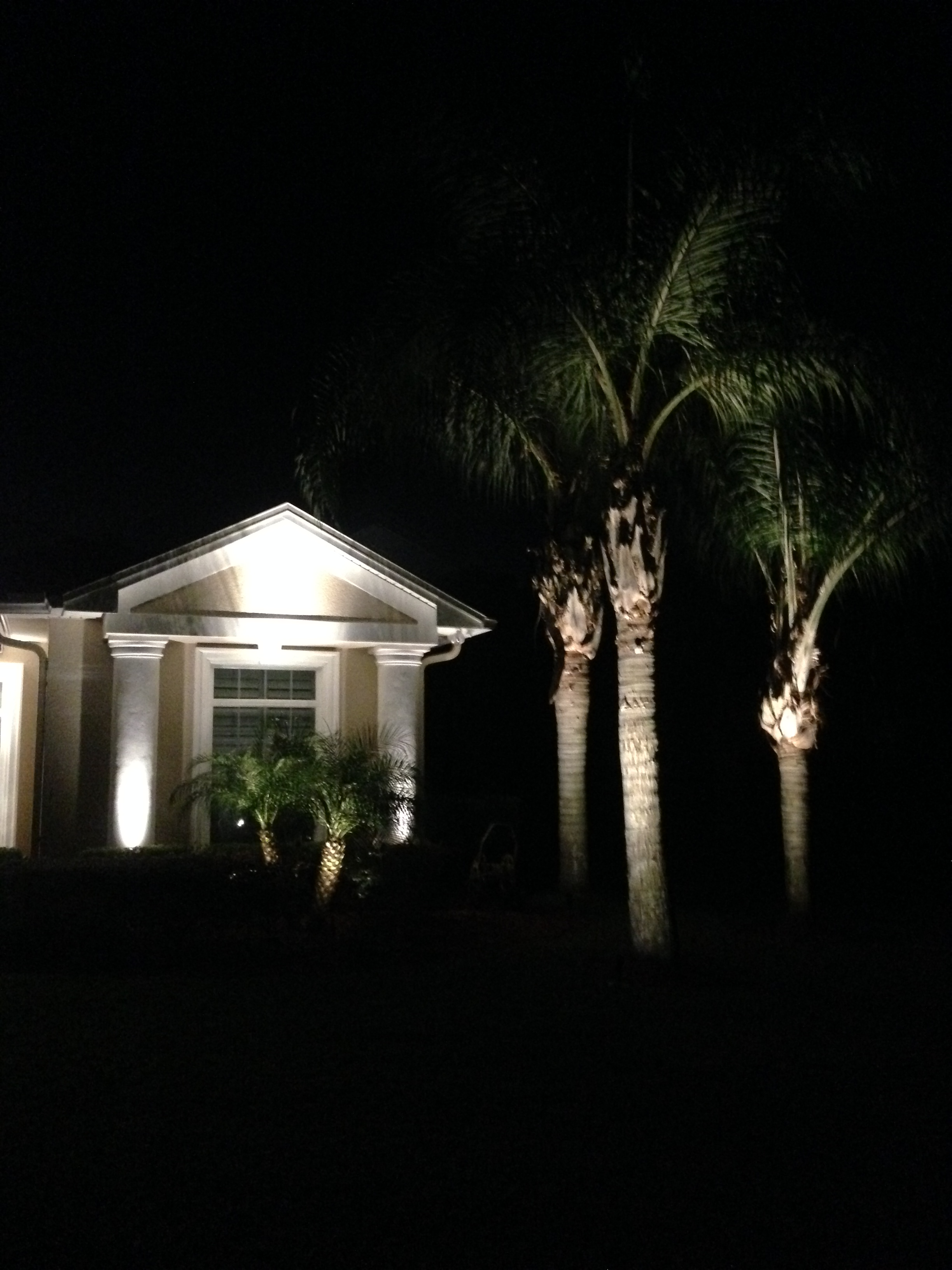 Exterior LED Landscape lighting
