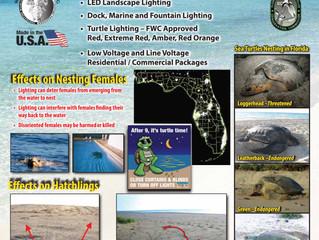 Save Money, Go Green, Save the Sea  Turtles!