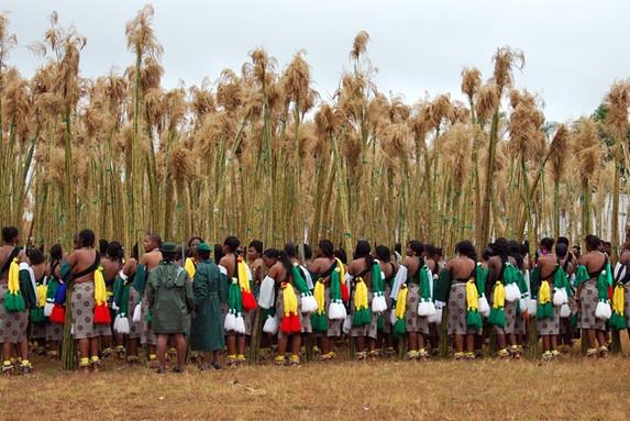 Swati Maidens