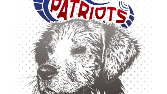 K9 Partners for Patriots 5K Run/Walk