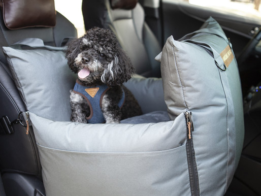 Dog Car Seats and Seat Belts: Can They Keep Your Pup Safe?