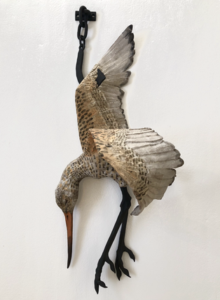 Sarah Conti, Still Life with Meat Hook and Dead Marbled Godwit