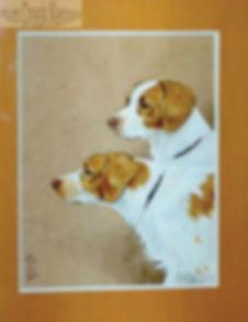 picdogs.jpg