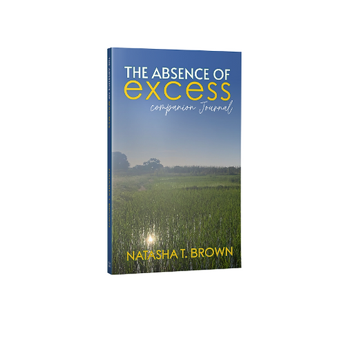The Absence of Excess Companion Journal