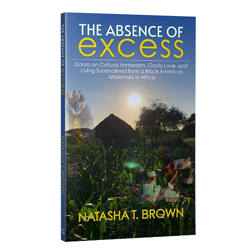 The Absence of Excess Paperback Book
