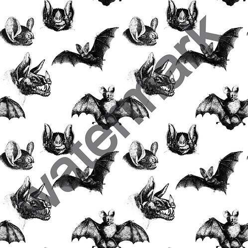 Bats in the Belfry