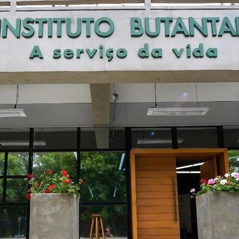 Instituto Butantan completa 120 anos como referência em ciência no Brasil