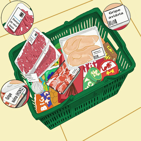Consumo de carne animal está entre os principais causadores de novas doenças