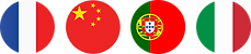 portuguese icon.png